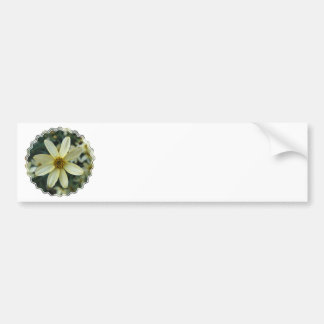 Coreopsis Bumper Stickers