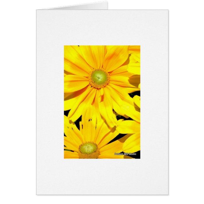 Coreopsis Card