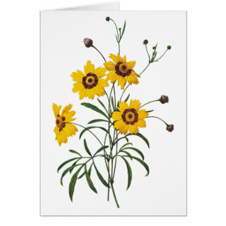 Coreopsis Watercolor Blank Note Card