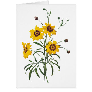 Coreopsis Watercolor Thank You Card