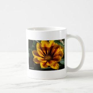 Cores Vibrantes Mugs
