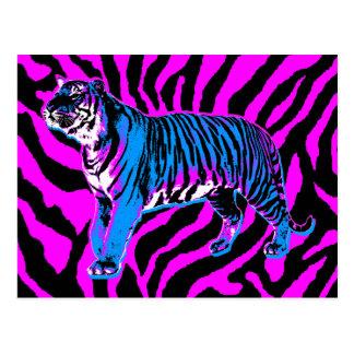 COREY TIGER 1980s RETRO VINTAGE WILD TIGER Post Cards