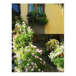 Corfu Greece Old Town Flowers Postcard