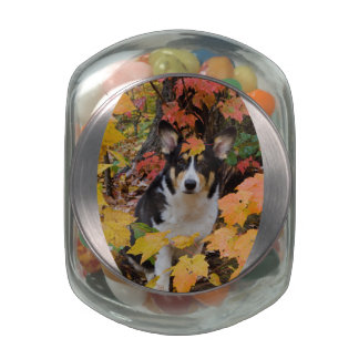 Corgi and Fall Colors Design Glass Candy Jars