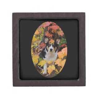 Corgi and Fall Colors Design Jewelry Box