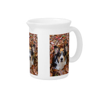 Corgi and Fall Leaves Drink Pitcher