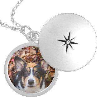 Corgi and Fall Leaves Silver Plated Necklace