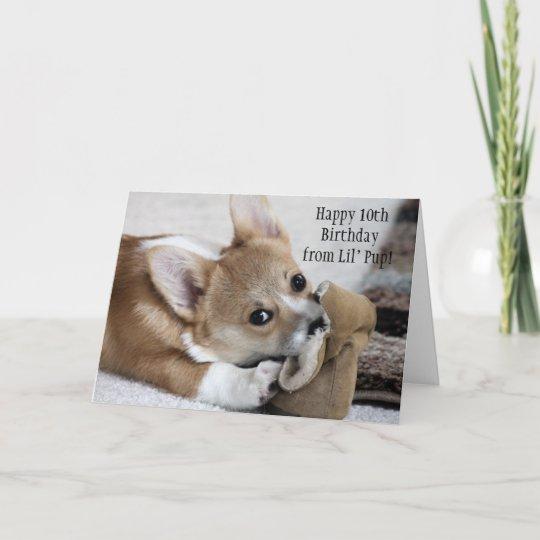 Corgi Birthday Wishes Card