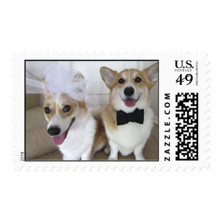 corgi bride and groom postage