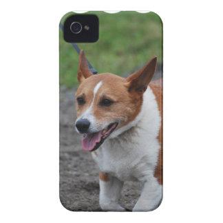 Corgi iPhone 4 Case-Mate Case