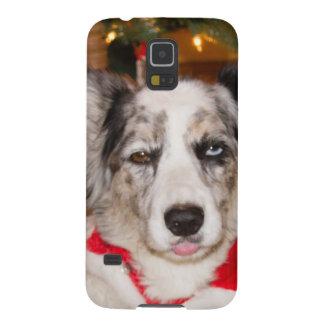 ¡Corgi del embaucamiento de Bah!!! Carcasa Para Galaxy S5