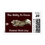 Corgi Focus Stamp