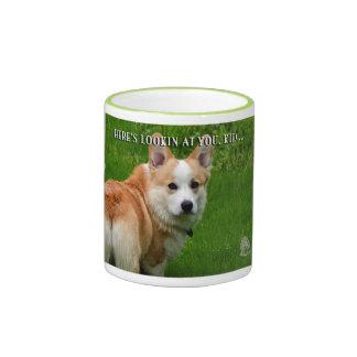 corgi galés del pembroke en su taza