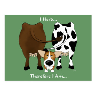 Corgi - I Herd Therefore I Am Postcard