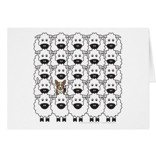 Corgi in the Sheep Greeting Cards