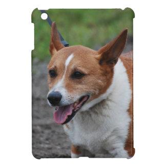Corgi iPad Mini Cases
