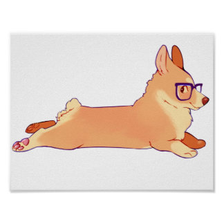 Corgi laying down poster