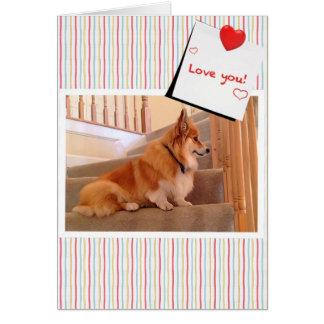 Corgi lindo mullido en la tarjeta del día de San V