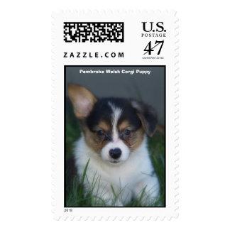 Corgi negro y perrito del moreno, perrito del sello postal