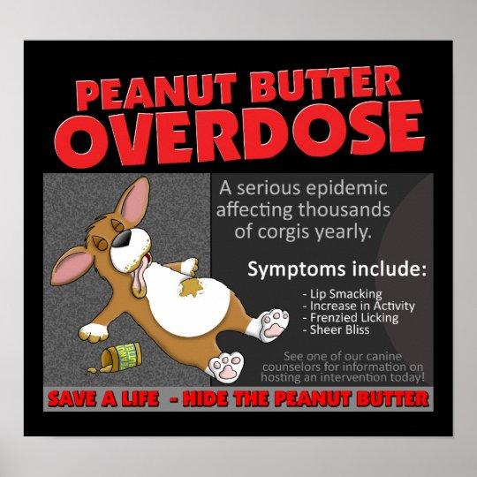 Corgi PB Overdose Poster