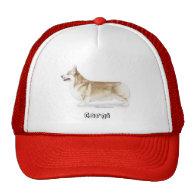 Corgi -- Pembroke Welsh Hat