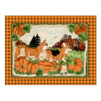 Corgi Pumpkin Patch Postcard