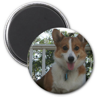 Corgi Puppy Dog Circular Magnet
