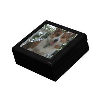 Corgi Puppy Gift Box