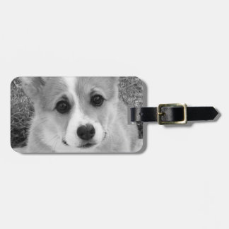 Corgi Puppy Tags For Bags