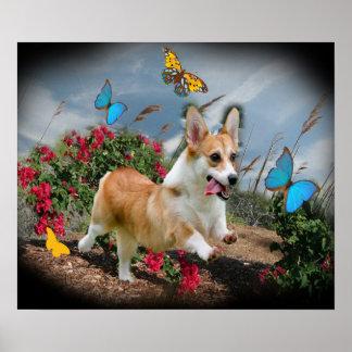 Corgi que persigue el poster de las mariposas
