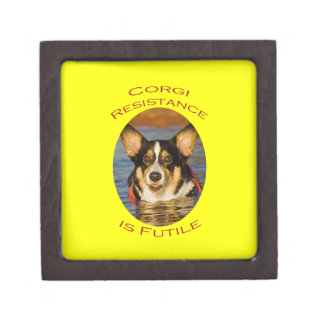Corgi Resistance is Futile with Yellow Background Gift Box