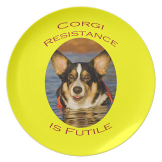 Corgi Resistance is Futile with Yellow Background Plate