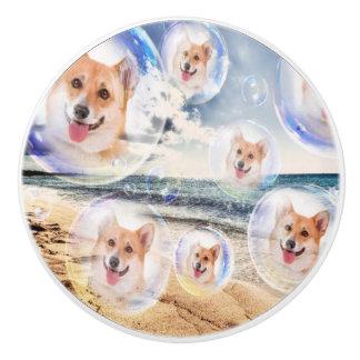 Corgis de la playa pomo de cerámica