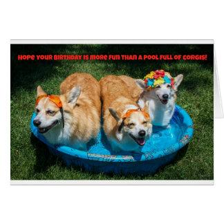 Corgis in a pool birthday card