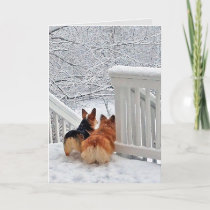 Corgis in the Snow Holiday Card