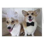 corgis vestidos encima como de novia y de novio tarjeta de felicitación