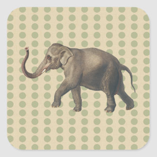 Coriander Spice Moods Dots with Elephant Square Stickers