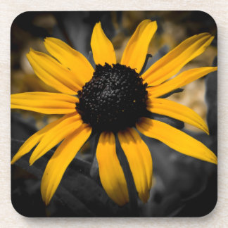 Cork Coaster - Black Eyed Susan