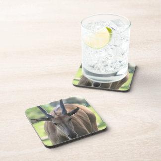Cork Coaster - Customized