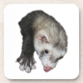 Cork Coaster Ferret with Tongue Sticking Out