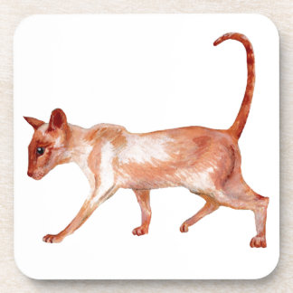 cork coasters sets - red point siamese cat