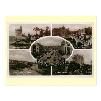 Cork District, Ireland Vintage Postcard