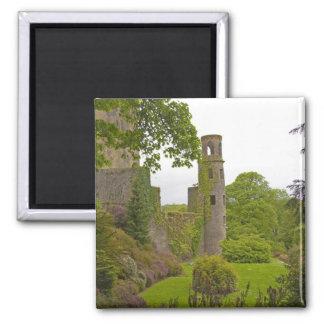 Cork, Ireland. The infamous Blarney Castle 2 Magnet