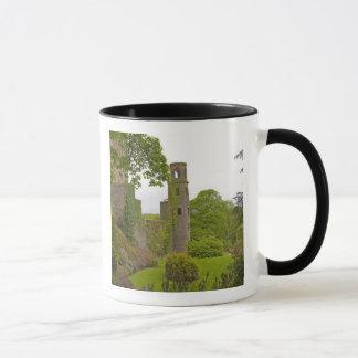 Cork, Ireland. The infamous Blarney Castle 2 Mug