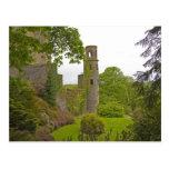 Cork, Ireland. The infamous Blarney Castle 2 Postcard