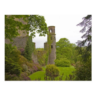 Cork, Ireland. The infamous Blarney Castle 2 Postcard