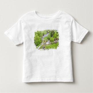 Cork, Ireland. The infamous Blarney Castle Toddler T-shirt