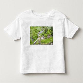 Cork, Ireland. The infamous Blarney Castle T-shirt