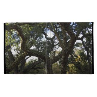 Cork oak or tree of the cork, elegant tree iPad case