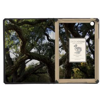 Cork oak or tree of the cork, elegant tree iPad mini retina cover